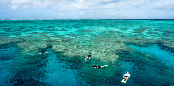 Snorkelling in the reef